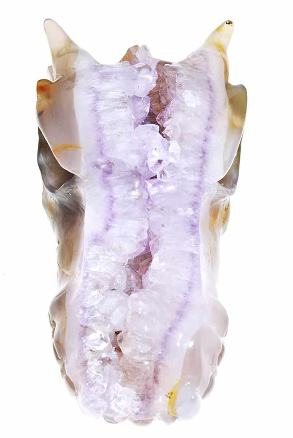 Lavendel Amethist geode drakenschedel, 15.5 cm, 1.03 kg