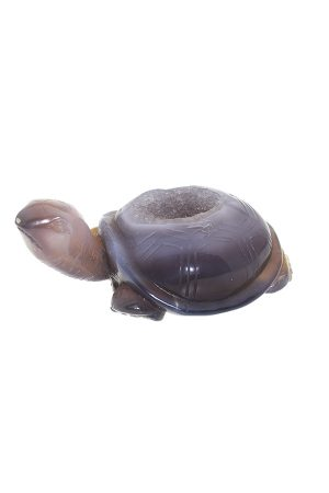 Agaat Geode edelsteen schildpad, agate, animal, dieren, edelstenen schildpad, turtle, kopen, speciaal, bijzonder