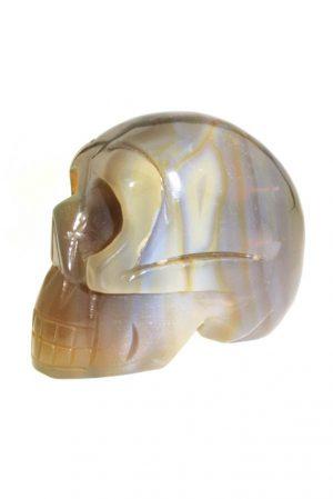 Agaat kristallen schedel, agaat crystal skull, carneool, beschermend, gelukssteen, edelsteen, edelstenen, kopen, schedel, botswana agaat schedel