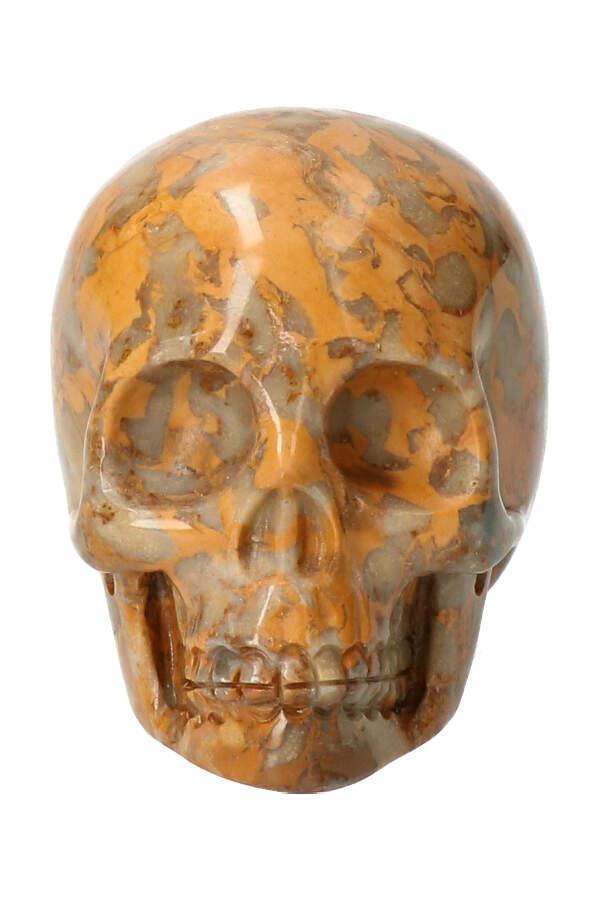 Fossiel koraal kristallen schedel, 7.5 cm, 313 gram