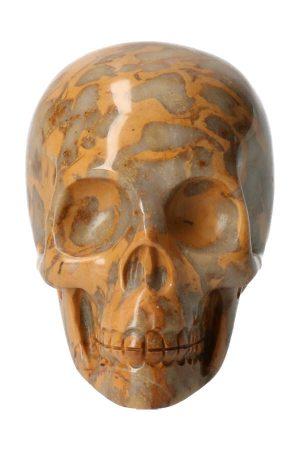 Fossiel koraal kristallen schedel, 5 cm