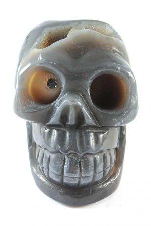 agaat geode kristallen schedel, crystal skull geode, skull, kopen, open schedel