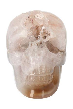 Agaat met Bergkristal Geode kristallen schedel, kopen, clear quartz, crystal skull, kristallen schedel