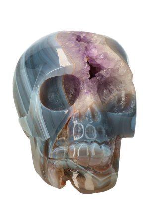Amethist geode kristallen schedel, amethyst geode crystal skull, kopen