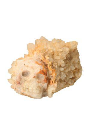 Golden Healer Lemurian kristallen cluster schedel, crystal skull, kopen