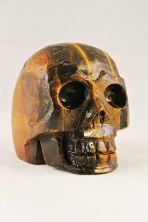 tijgeroog, crystal skull, tijgeroog kristallen schedel, tijgeroog skull