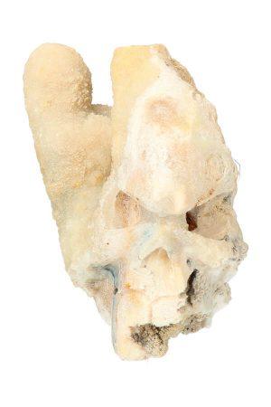 Calciet kristallen schedel, ruwe calciet, calcite, crystal skull, kopen