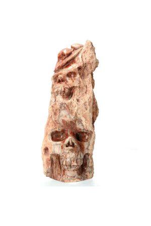 versteend hout skull, schedel, kopen, fossiel hout crystal skull, versteend hout kristallen schedel, petrified wood, fossiel hout, versteen hout sculptuur, sculptuur, gepolijst, polished, polijst, kopen, bestellen, edelsteen, edelstenen, mineralen, mineraal, rood, madagaskar, madagascar, versteend hout schedel