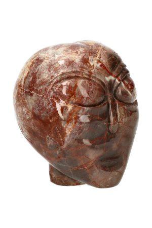 Drakenbloedsteen kristallen Alien schedel