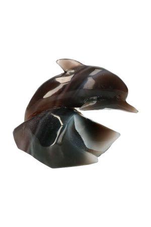 agaat geode dolfijn, geode dolphin, edelsteen dolfijn, edelstenen dolfijn, kristallen dolfijn, kopen