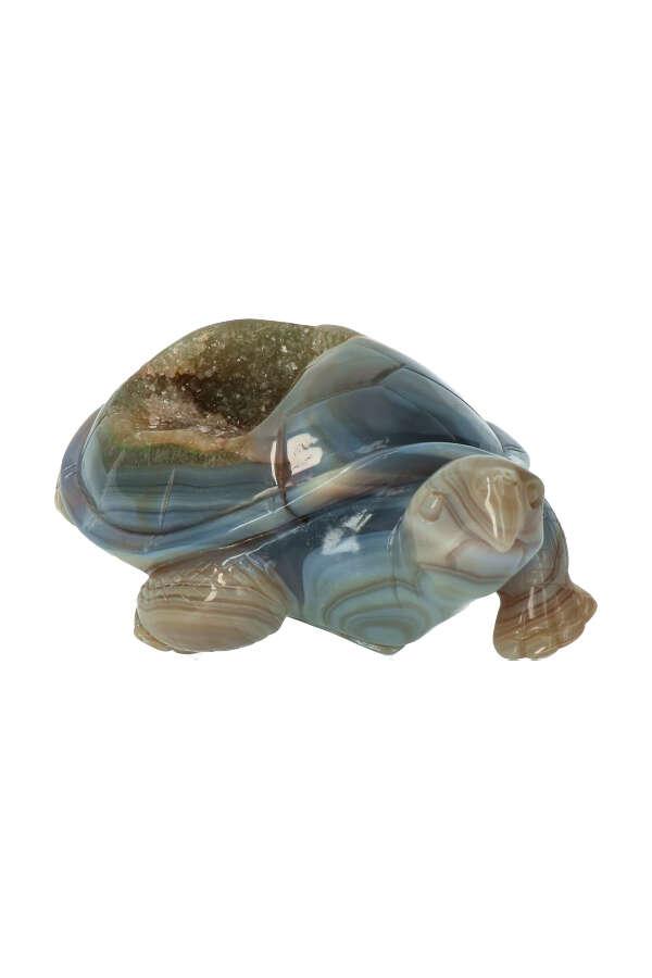 chloriet geode schildpad, chlorite geode turtle, kopem, edelsteen, edelstenen, carving