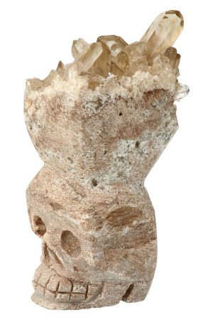 osiris crystal skull, rookkwarts, morion, osiris, morion crystal skull, osiris crystal skull, kristallen schedel, rookkwarts schedel, rookkwarts punten schedel, crystal skull rookkwarts, black pointy skull, skull, schedel, morion schedel kopen, morion crystal skull kopen, zwarte punten skull, osiris crystal skull, osiris kristallen schedel, osiris skull, morion kristallen schedel