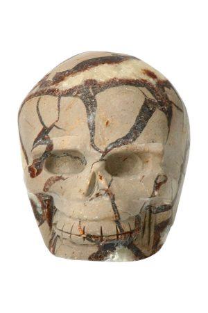 Septarie kristallen schedel uit edelsteen uit Madagaskar gecarved