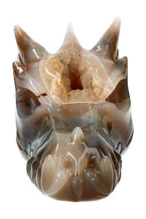 Citrien geode kristallen drakenschedel