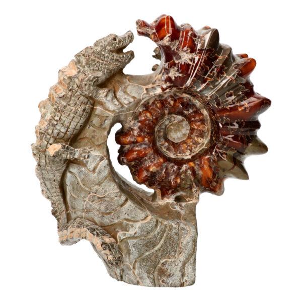 Ammoniet fossiel met krokodil, 23 cm, 3.46 kg