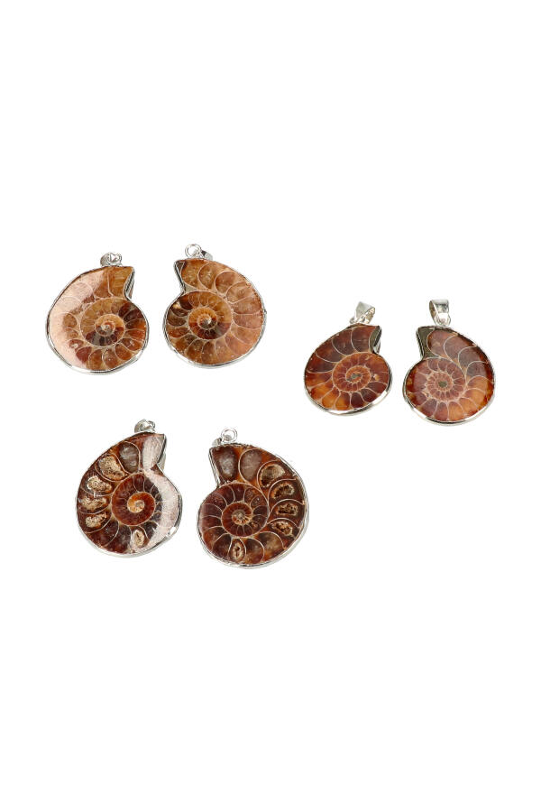 Ammoniet geopaliseerd paartje hanger 2-3 cm