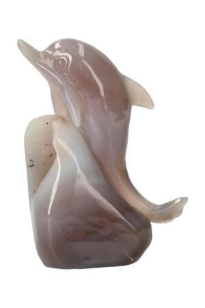Agaat met Dendriet Geode Dolfijn