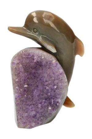 Amethist met Agaat Geode Dolfijn