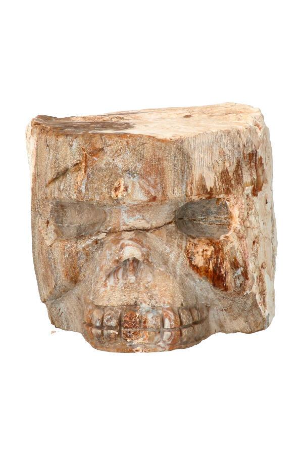 Boomspirit kristallen schedel, Versteend Hout 8,1 cm, 1,69 KG