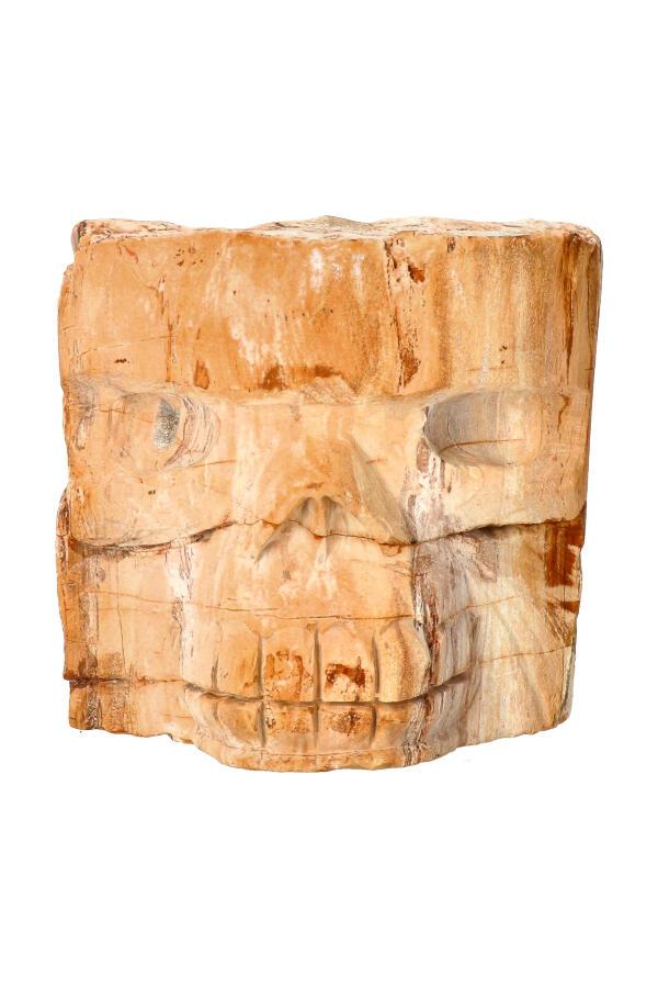 Boomspirit kristallen schedel, Versteend Hout 8,9 cm, 1,33 KG