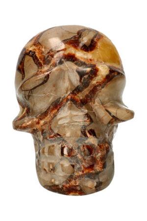 Septarie kristallen schedel crystal skull
