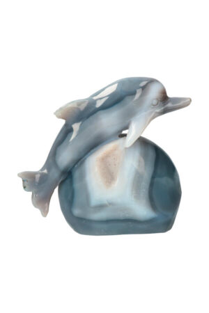 Agaat met kleine stukjes Chloriet en stukjes Mosagaat Dolfijn