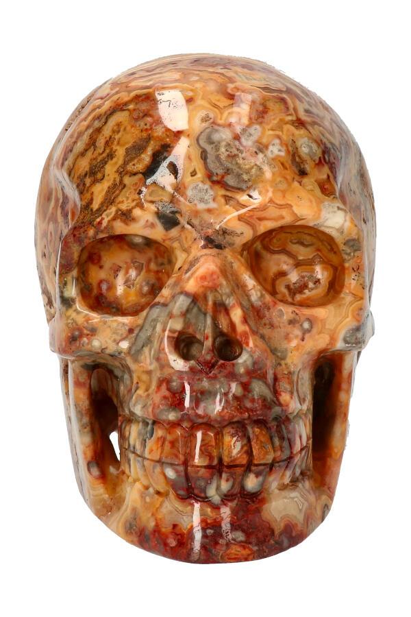 Crazy Lace realistische kristallen schedel met kleine Geode, 13 cm, 1,48 kg