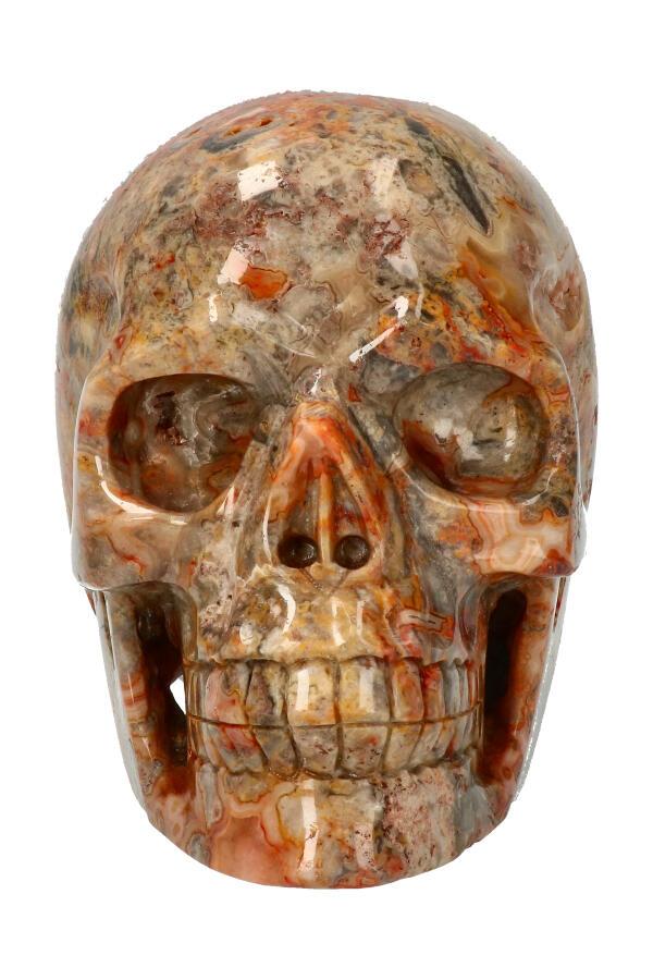 Crazy Lace realistische kristallen schedel met kleine Geode, 13 cm, 1,8 kg