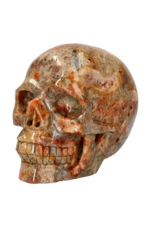 Crazy Lace realistische kristallen schedel met kleine Geode,