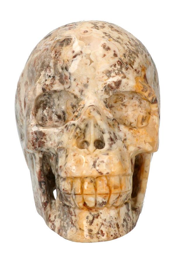 Crazy Lace realistische kristallen schedel, 12.5 cm, 1.47 kg