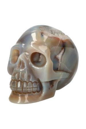 Agaat geode met Dendriet en Bergkristal kristallen schedel