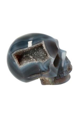 Agaat geode met Red Healer en Chloriet en Bergkristal kristallen schedel