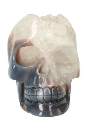 Agaat geode met Bergkristal kristallen schedel