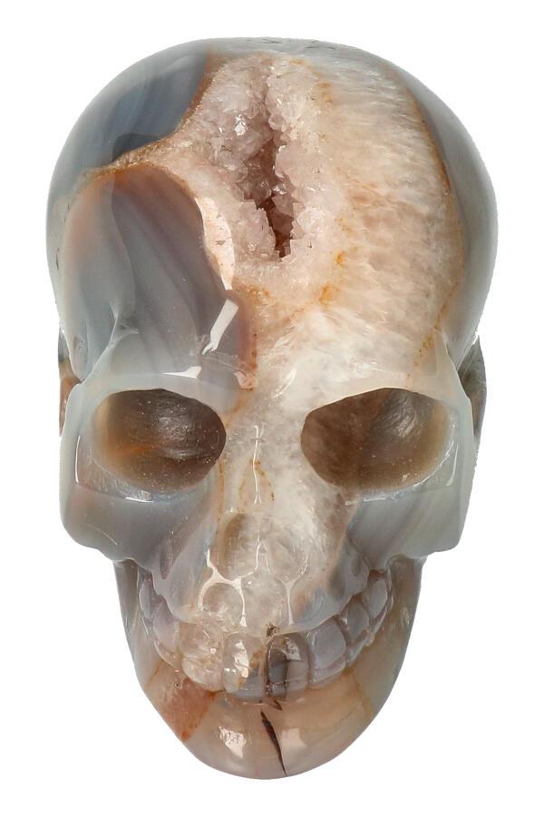 Agaat geode met Bergkristal en Carneool en Dendriet kristallen schedel, 9 cm, 487 gram