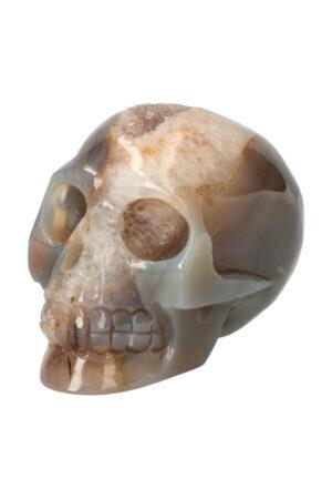 Agaat geode met Bergkristal en Carneool en Dendriet kristallen schedel
