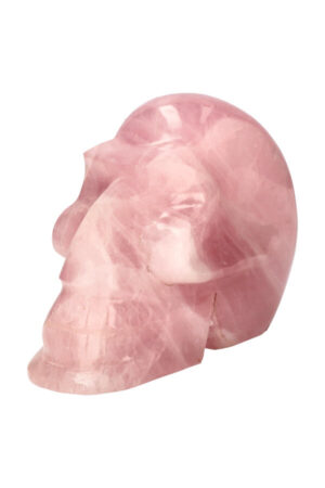 Afrikaanse Rozenkwarts kristallen schedel