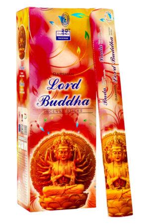 Darshan Lord Buddha wierook.