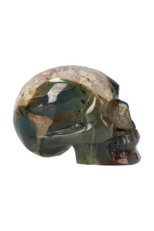 Agaat geode met Chloriet, Bergkristal en Dendriet kristallen schedel