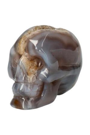 Agaat geode met Bergkristal en Dendriet kristallen schedel