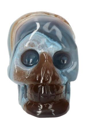 Agaat geode met Carneool kristallen schedel