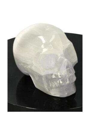 Seleniet kristallen schedel selenite crystal skull