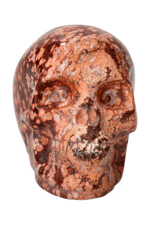 Luipaard Jaspis kristallen schedel