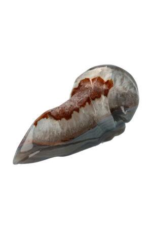 Super 7 Bergkristal en Agaat geode ravenschedel 15 cm 540 gram