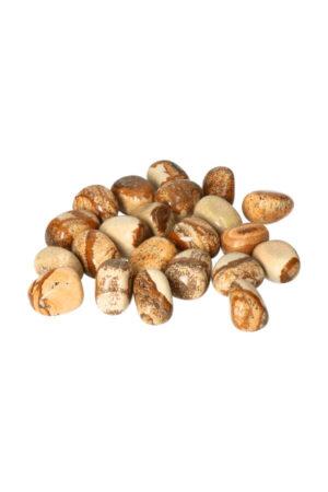 Dendriet steen, stenen, van 1 steen tot zakken van 100 gram tot 1 kilo, circa 2 tot 3.5 cm