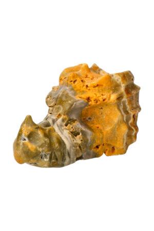 Bumblebee Jaspis kristallen drakenschedel, 7 cm