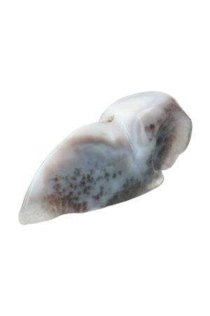 Agaat Geode Raven Schedel