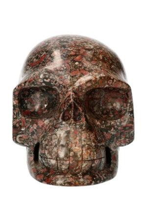 Zee Lelierealistische kristallen schedel