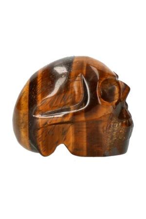 Tijgeroog schedel 5 cm