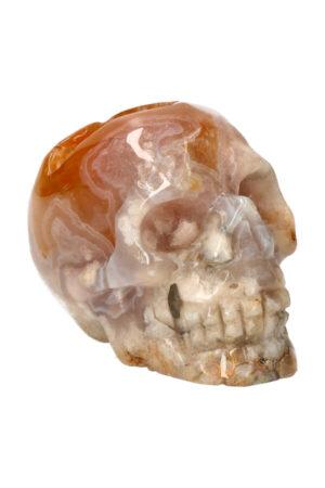 Kersenbloesem Agaat kristallen edelsteen schedel 8.6 cm 302 gram