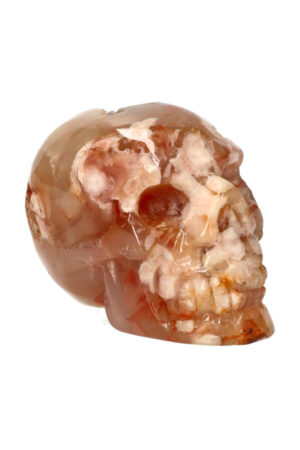 Kersenbloesem Agaat kristallen edelsteen schedel 8.5 cm 308 gram
